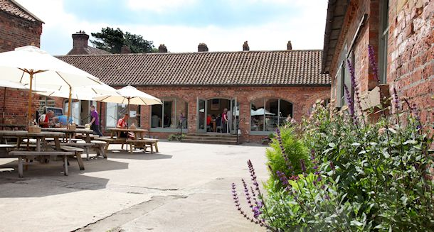Farm Shop & Cafe, East Rounton